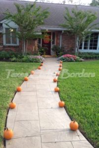 Decorative concrete walkway after image